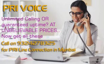 How Can PRI Line Help My Business? What is a ISDN PRI Voice and Advantages of PRI Line Connection Over an Analog Line